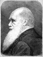 darwin-mi-1882
